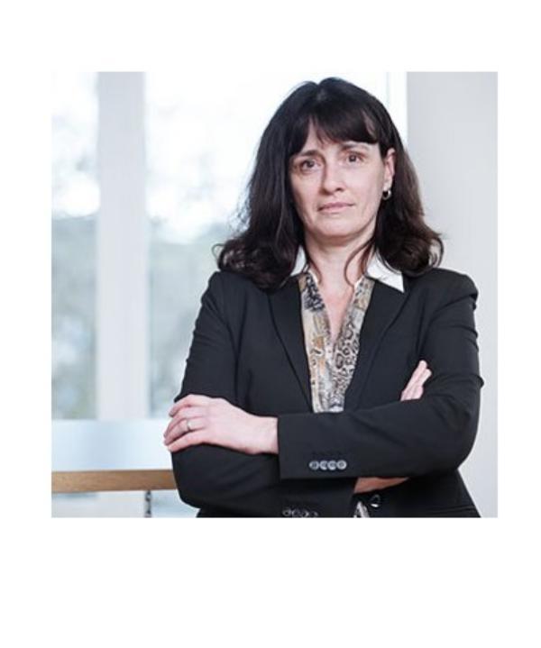 Rechtsanwältin<br/> Antje Menne